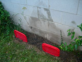 New Herb Bed