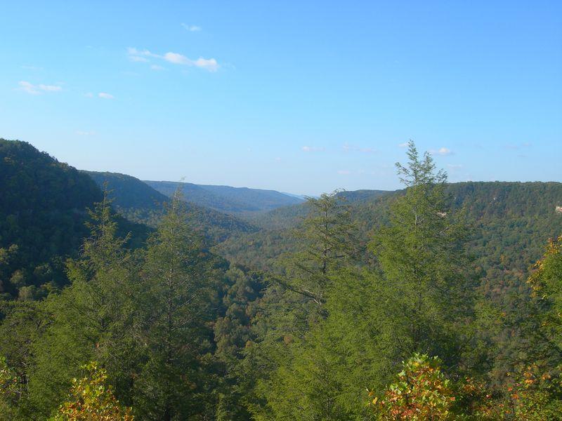 Mountain View 10-11