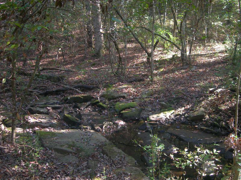 Creek 2 10-02-11