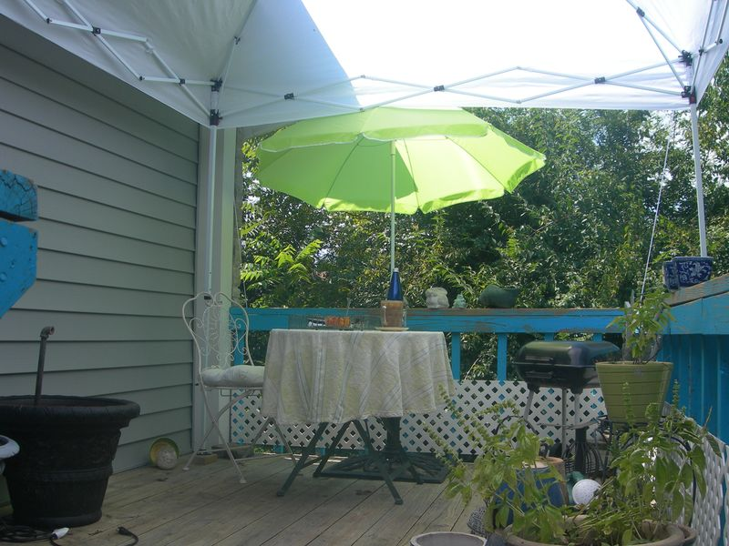 Porch with Canopy 2011
