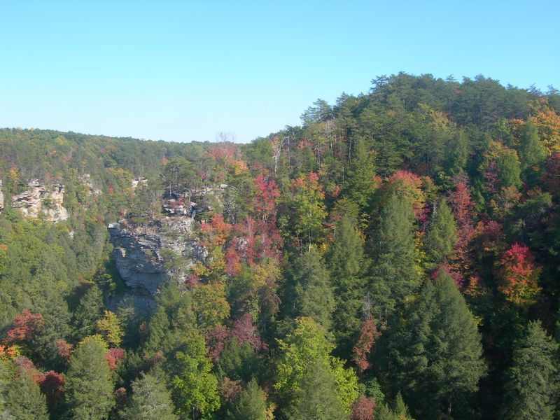 Fall Creek Falls View 10-11