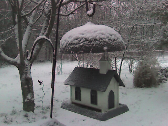 Snow_on_birdhouse
