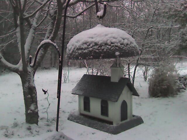 Snow_on_birdhouse